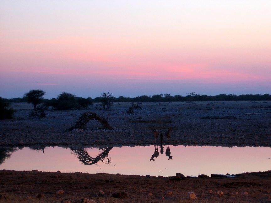 Rondreis Zuid Afrika, Botswana, Namibie